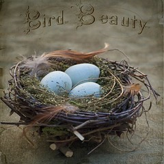 """Three Little Birds"" (Beatrycze.) Tags: blue texture easter spirit decoration eggs birdnest"