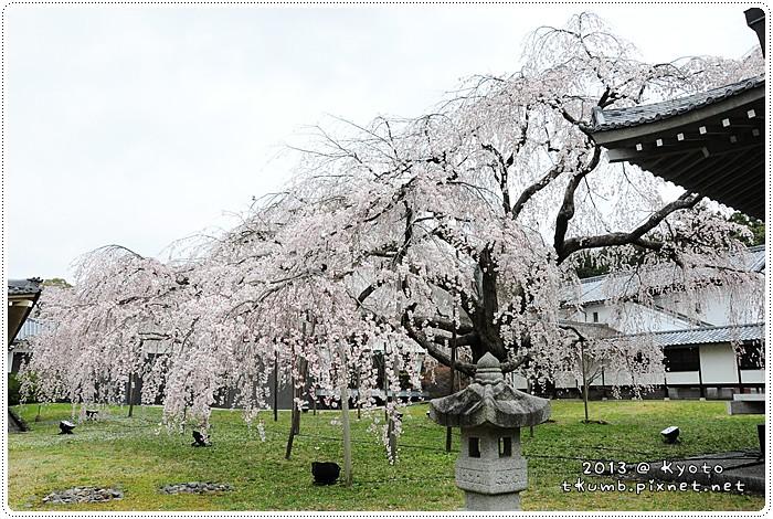醍醐寺 (10).jpg