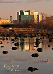 FREEDOM TOWER in the Distance Keeps Rising . . . During Low Tide and Sunset at Mill Creek Marsh in Secaucus NJ (Meadowlands) (takegoro) Tags: sunset skyline creek reflections skyscrapers magichour goldenhour low tide freedomtower marsh landscape nature cedar meadowlands mill nj secaucus stumps