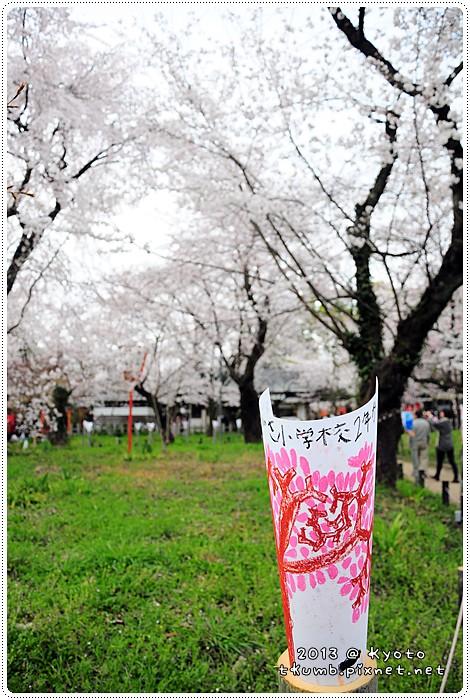 平野神社 (5).jpg