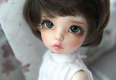 Alita (Dancing*Butterfly) Tags: doll caroline bjd fairyland ante ltf yosd littlefee viridianhouse makoeyes