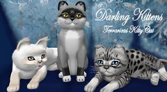 Darling Kittens (Terrariea) Tags: pet cats pets home animal animals shop cat store kitten feline kitty kittens pebbles sl size secondlife kitteh breed darlings darling cutecat kittys pedigree kittycats kittycat cutekitten 2ndlife cattery catlab catfriends amazingcat catfamily catfriend vitural speciall virtualimage breedable virtualcat breedables kittycatssl kittycatsaddicts terrariea kittycatsaddict primpet primanimal virturalimages virturalanimal vituralcat vituralcats virturalkitten vituralpet vituralpets vituralimage vituralimages vituralkitten vituralkitties vituralkitte breedablesl virturalkittens