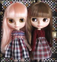 StElla and Paisley