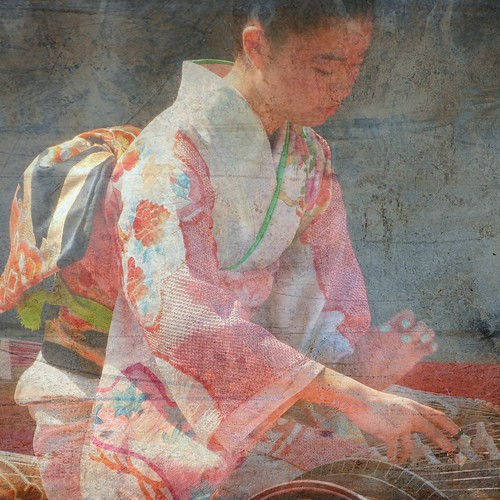 the koto player