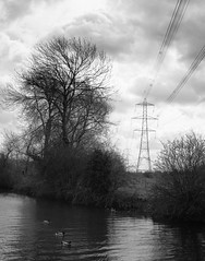 The canal near Loughborough (Brian Negus) Tags: england bw canal spring cloudy unitedkingdom pylon electricity loughborough blindphotographers