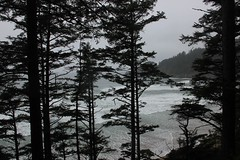 Oswald West Park in Oregon (AnEscapedMind) Tags: oregon rainforest pacificocean oswaldweststatepark shortsandbeach