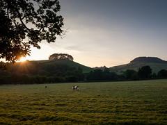 Rosedale Sunset (Hector Patrick) Tags: bowbridge flickrelite fujifilmxpro2 fujinonxf1655f28rlmwr lightroom66 northyorkmoors northyorkshire northdalebeck rosedale riverseven rosedaleabbey twop twohills yorkshire britnatparks sheep sunset weather