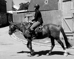 Girl and horse on the street (patrick_milan) Tags: noiretblanc blackandwhite noir blanc monochrome nb bw black white street rue people personne gens streetview cheval scene