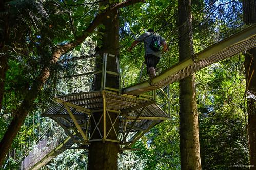 Thumbnail from UBC Botanical Garden