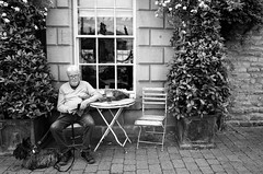 Scotty And Pint (nigelhunter) Tags: kirkby lonsdale pint scotty scottishe terrier man street candid drink table chair flower rose pavement urban glasses spectacles