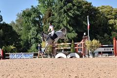 DSC_0990 (2) (ploufjf_64) Tags: paus show jumping chevaux pau 2016