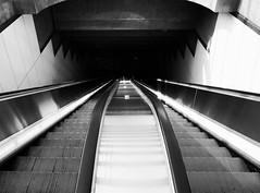 pershing square down (dustin.gebhard) Tags: going down losangeles deadbeatgallery ricohgr dt dtla pershing square metro subway streetphotography monochrome blackandwhite