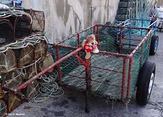 Lastres, Asturias, Espaa (Caty V. mazarias antoranz) Tags: lastres asturias puertodelastres principadodeasturias costasasturianas cantbrico mar salitre pescado aguasalada leonie leoncia