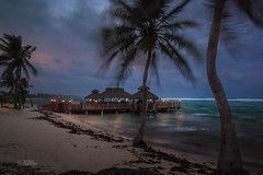 Dining Deck @ The White House Restaurant By: Wil Bignal (wilBignal) Tags: view trees palm beach ocean cloudy weather caymanislands landscape