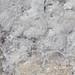 The salt at Lake Asale