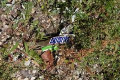(halflifehalflived) Tags: satisfaction trash detritus chicago