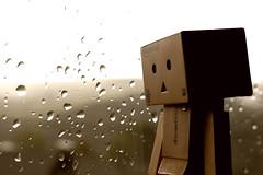 4/365 Regen / Rain (-Aperture-) Tags: danbo danboard 365 tage days project projekt eos ef 35 35mm 600d is usm canon regen rain bokeh