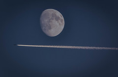 Blue hour - nearly full moon (Udo S) Tags: blue hour mond flugzeug plane sky himmel nacht night