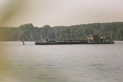 NKRS5504 (pristan25maj) Tags: green pristan pristan25maj brodovi boats reka river dunav danube photonemanjaknezevic nkrs