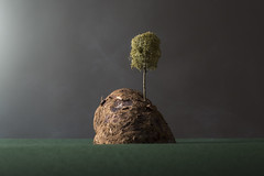 Island (William John Cooper) Tags: studio studiolighting lighting flash tabletop tabletopphotography still stilllife art fineart food paper landscape miniature model island sea ocean dark mist smoke greysky