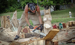 Woodworking in Townsend.. (mark owens2009) Tags: bears saw stihl woodworker townsend tennessee 2016 bearcarving