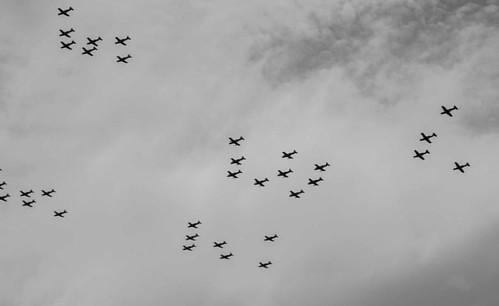 Hace algunos días por mi rancho volaban unas aves gigantes de acero. #aviones #cielo #blancoynegro #fuerzaaerea #airforce #mexico #planes #fuerzaAereaMexicana #army #periodismo #photoofday #photojournalism #streetphotography #paisajecdmx #paisaje #paisaje