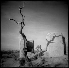 Ryan Ranch (joshuammulligan) Tags: shadow blackandwhite film analog landscape nationalpark lomo lomography toycamera joshuatree haunted diana analogue ryanranch dianamini ruinporn