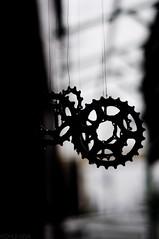 _DSC1854 (Kohji Iida) Tags: street bicycle silhouette japan photography 50mm nikon bokeh gear 18 hang kohji tsuchiura ibaraki iida d90