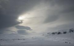D8A_3057 (Viggo Johansen) Tags: winter sun snow mountains cold sol norway vinter telemark fjell snø haukeli kaldt