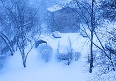 Tuesday, February 26, 2013 (Timo3K (muteprophet)) Tags: winter snow illinois il february blizzard lakecounty chicagoland islandlake 2013