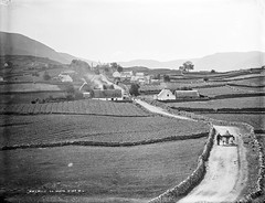 America, Co. Mayo?! Yes, although actually in Co. Galway... (National Library of Ireland on The Commons) Tags: ireland horse america children landscape village farming 19thcentury fields thatch mayo stonewalls connacht sidecar cottages connaught glassnegative thatchedcottages robertfrench williamlawrence nationallibraryofireland lawrencecollection limerickbybeachcomber