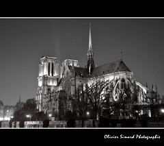 Notre-Dame by night (Olivier Simard Photographie) Tags: paris seine architecture night noiretblanc ile chimre nuit gothique nocturne notredamedeparis gargouille cloche fleuve clocher ledelacit abside flche violletleduc chevet pontdelatournelle mauricedesully arcboutant archidiocsedeparis lutce photographyforrecreation sacristieduchapitre oliviersimardphotographie