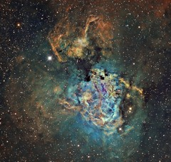 The Swan Nebula M17 Hubble Palette crop (Terry Hancock www.downunderobservatory.com) Tags: camera sky monochrome night stars photography mono pier back swan backyard fotografie photos thomas space omega shed band science images astro apo sagittarius m observatory telescope astrophotography lobster astronomy imaging horseshoe messier ccd universe narrow cosmos palette paramount hubble luminance m17 hst lodestar teleskop astronomie byo refractor deepsky f55 checkmark astrograph autoguider starlightxpress ngc6618 Astrometrydotnet:status=solved Astrometrydotnet:version=14400 tmb92ss mks4000 gt1100s qhy9m Astrometrydotnet:id=alpha20130384527985