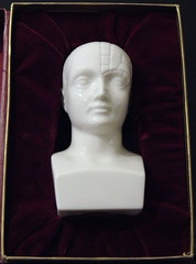 "Phrenology Head in Box Marked ""Schering"", A Marketing Item? (France1978) Tags: phrenology schering"