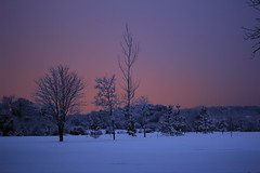 landscape (JT.Photography) Tags: blue trees winter summer sky snow colour closeup canon landscape march spring flickr bangor northernireland now flickrpro codown flickraward canon600d