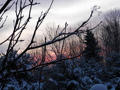 Belle vue de ma fenêtre... (Micheline Albert Boucher) Tags: de soleil hiver lever
