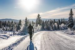Winter wonderland (Tommy Huseb) Tags: road blue winter sky sun white ski norway canon sigma wonderland gol 550d