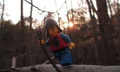 Hold On (Sunset) (Blueberrybricks) Tags: park old tree nature lego outdoor retro knight