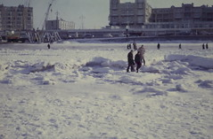 knots, the doubles (217) (bertknot) Tags: scheveningen winterinholland knottenbeld