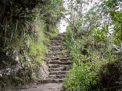 Who's sure (Charlie2012RTW) Tags: peru stairs caminodelinca