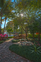 Landscapers delight (fiu) Tags: trees urban students campus university paradise florida miami international study jungle em fiu modestomaidique