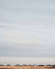 Farmland Suburbia (SeanEsopenko) Tags: new homes canada calgary monster nc spring nikon g suburbia 85mm farmland southern alberta dxo nikkor 18 portra afs developments d800 conrich filmpack