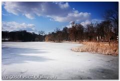 frozen pond (gosiahh) Tags: park blue sky cloud white snow ice nature water landscape pond flora view poland poznan