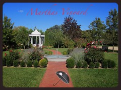 Marthas Vinyard (Acire9) Tags: travel love sailboat garden marthas marthasvinyard cape cod vinyard massachussettes uploaded:by=flickrmobile flickriosapp:filter=nofilter