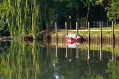 Perfect reflection (Adri 79) Tags: adrianodavanzo canon7dmarkii samyang135mmf2edumc perfect reflection
