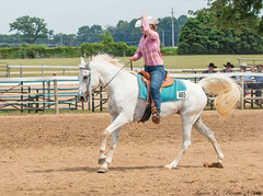 White Appaloosa (BirdFancier01) Tags: gallop horse equine cowgirl reining appaloosa white arena competition
