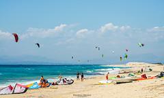 Up! (Predrag Drobac) Tags: shore seaside beach landscape outdoor coast sea sports kitesurfing windsurfing clouds