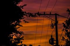 Trilho da Luz (leocsaad) Tags: orange sky sun set contrast contraste laranja cu por do sol pr pordosol nasce nascer sunset dawn twilight color cor amarelo azul fio luz light wire camanducaia monte verde minas gerais brazil brasil nature campo interior mountain