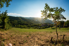 Sunbathing (Zano91) Tags: grass sky distorted nikon d7100 samyang 8mm f35 fisheye mood moody colors color green blue lightblue grey colorful spring morning trees outdoor rim circle round tree shadows light sun ray nature sides clouds leaves illuminated plant mountain hill hills landscape grassland field foothill mountainside