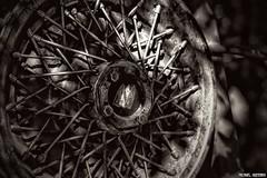 A Long Drive...[Explore] (Ring of Fire Hot Sauce 1) Tags: carsland disneycaliforniaadventure hubcap rusty monochrome blackwhite